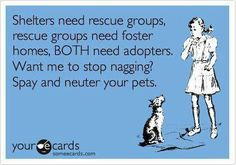 SPAY and NEUTER!!