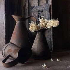 Beauty in still life by vickiarcher