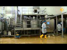▶ D&W Process Technology PEF Unit - YouTube