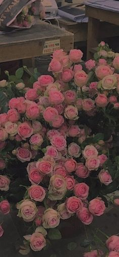 아이폰 배경화면 : 네이버 블로그 Angel Aesthetic, Flower Aesthetic, Aesthetic Art, Aesthetic Pictures, Aphrodite Aesthetic, Flower Bomb, Iphone Background Wallpaper, Photo Wall Collage, Pink Walls