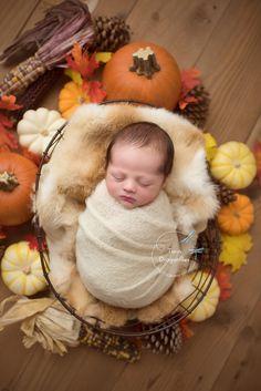 Newborn Pictures, Newborn Pics, Maternity Photography, Infant Photography, Dragonfly Photography, Newborn Halloween, Crochet Baby Cocoon, Baby Name List, Newborn Studio
