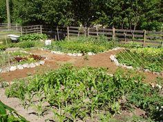 hobby farm designs yard - Google Search