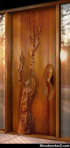 Unique door. .. More Woodworking Projects on www.woodworkerz.com