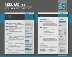 Professional Resume Template  Pages Word Resume Design With