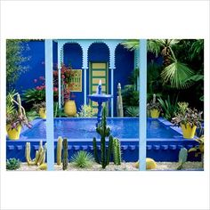 GAP Photos - Garden & Plant Picture Library - Cobalt blue fountain, cacti and yellow terracotta pots in the Moroccan style Yves St. Laurent Garden designed by Madison Cox, Chelsea 97 - GAP Photos - Specialising in horticultural photography