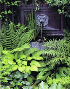 Fountain in a shady border - not necessarily this style or even a fountain…