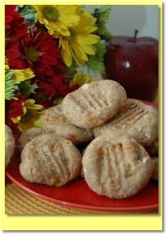 Oat And Apple Dog Cookie Recipe. Site has lots of dog treat recipes! Dog Cookie Recipes, Dog Treat Recipes, Dog Food Recipes, Homemade Dog Treats, Healthy Dog Treats, Dog Cookies, Apple Cookies, Dog Training Methods, Training Dogs