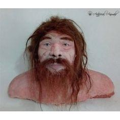 Homo neanderthalensis. Reconstrucción forense sobre el cráneo. Animals, Extinct Animals, Museums, Animales, Animaux, Animal Memes, Animal, Animais, Dieren