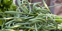 Garlic scape recipes from the Huffington Post. Bacon wrapped garlic scapes, anyone?