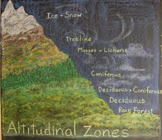 Altitudinal zones in geography Blackboard Drawing, Chalkboard Drawings, Chalk Drawings, Chalkboard Designs, Waldorf Education, Waldorf Curriculum, 5th Grade Geography, Earth Layers, Eighth Grade