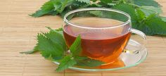 Health Benefits of Nettle Tea Healthy Nutrition, Healthy Life, Peppermint Tea Benefits, Sante Bio, Indian Veg Recipes, Great Recipes, Healthy Recipes, Menu Dieta, Rich Recipe