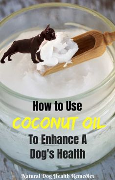 Coconut oil can be used both internally and topically to help enhance a dog's health and treat various health issues.