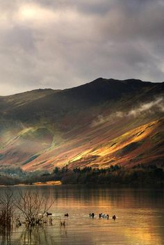 Lake In Cumbria, England by John Short