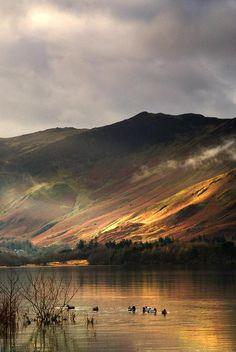Lake In Cumbria, England by John Short
