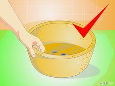 Cómo hacer macetas de cemento                              … …