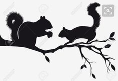 squirrels on tree branch, vector background - Millions of Creative Stock Photos, Vectors, Videos and Music Files For Your Inspiration and Projects.<br> Vector - squirrels on tree branch, vector background Animal Silhouette, Silhouette Art, Squirrel Silhouette, Squirrel Tattoo, Branch Vector, Rock Crafts, Vector Background, Woodland Animals, Rock Art