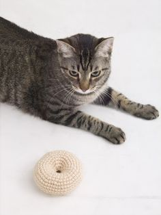 This cute crochet bagel makes an adorable cat toy when stuffed with catnip! Make it with 1 ball of Lion Brand Vanna's Choice and a size G-6 (4 mm) crochet hook!