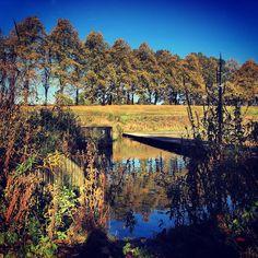 Inverleith Park #stockbridge #stockbridgeedinburgh #edinburgh #scotland