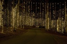 Callaway Gardens {Fantasy in Lights}, GA. looks spectacular!  This is always my favorite section.  It is breathtaking in person!
