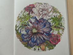 Tropical Flowers, Mandala, Mandalas