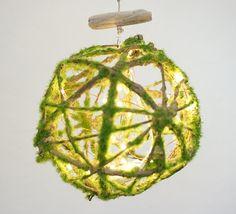 Moss ball, Driftwood, Fairy Lights