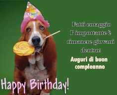 Fatti coraggio l'importante è rimanere giovani dentro! - Immagini con Frasi, Foto, Carte e Gif di Animali per scaricare e condividere su Facebook, Google+, WhatsApp... Birthday Greetings, Birthday Wishes, Singing Happy Birthday, Funny Phrases, Vignettes, Quotations, Birthdays, Joy, Humor