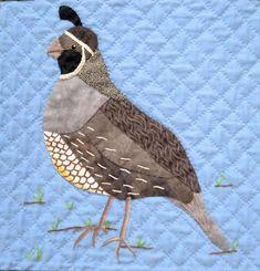 California Quail. Bird applique quilting pattern.