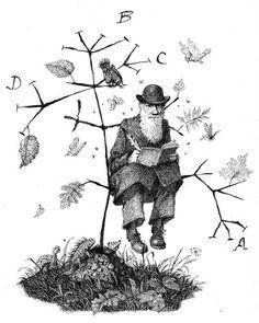 """Charles Darwin"" Giants of Science by Kathleen Krull, Viking 2010"