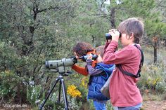 En plena observación de la fauna del Solsonès. Nos alojamos en el Càmping El Solsonès y desde allí organizamos una excursión para conocer la fauna y el paisaje del prepirineo y de la zona. Resultó al final una jornada magnífica en familia.