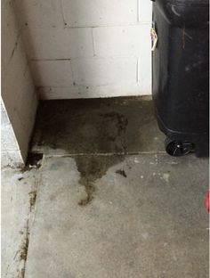 Water Seepage Like This Can Be Successfully Repaired Using The Proper  Method And Product. Hint