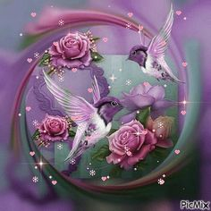 💗Wishing you a Beautiful and Blessed Day! Beautiful Gif, Beautiful Roses, Muharram Pictures, Evening Greetings, Happy Birthday Flower, Bird Gif, Good Morning Good Night, You Are Amazing, Morning Greeting