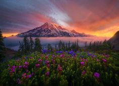 Tahoma the Great by Marc  Adamus on 500px