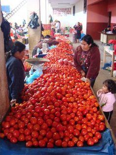 #Tomatos in #Guatemala!!!