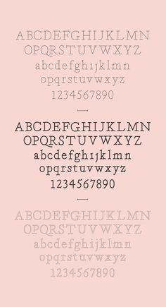 Within typeface – weights ( regular, filled & outlined )