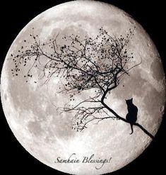 Samhain Ritual                                                                                                                                                                                 More