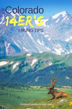 Take your hiking to new heights with the beginner's guide to Colorado's famous fourteeners, plus our top 10 tips for Colorado summit success! Visit Colorado, Colorado Hiking, Colorado Mountains, Get Outdoors, The Great Outdoors, Hiking Training, Hiking With Kids, Outdoor Activities For Kids, Rocky Mountain National Park