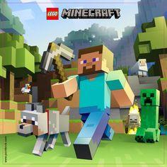 LEGO Minifigures Display Frame - Background 230mm Minecraft - Steve Plain - Clicca sull'immagine per scaricarla gratuitamente!