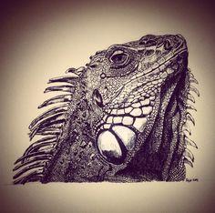 Line Art iguana