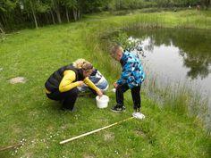 Waterbeestjes zoeken in libellenreservaat de Wyldemerk.