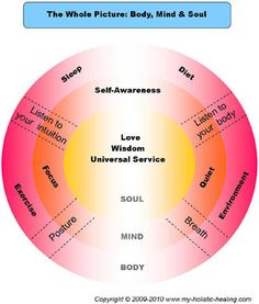 This diagram shows the whole picture of the body, mind and soul and how each level interacts to create holistic health.