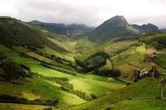Flores-Azores-Portugal | Flickr - Photo Sharing!    A view of the interior of Flores, showing a variety of heights, slopes, forest, fields, and grass. Portugal, Out To Sea, Balearic Islands, Beautiful Places In The World, Canary Islands, Lush Green, Portuguese, Fields, Roots