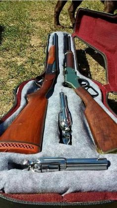 Guitar lever action rifle and gun case