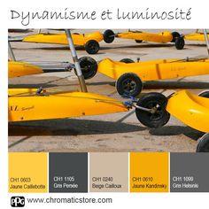 Le #jaune associé au #beige révèle une dynamique et une luminosité conviviale dans la #maison. Le #gris foncé donne la note contemporaine. www.chromaticstore.com