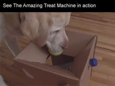 Have a dog that likes tennis balls? Dog drops a ball in the box and treats come out! Good for brain games.