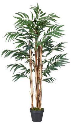 Kunstpflanze aus Kunststoff in der Farbe Grün. H: ca. 120cm.