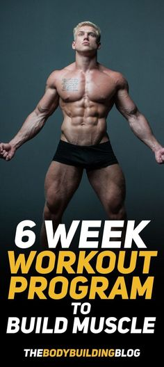 6 Week Workout Program To Build Muscle - A split 6 week workout program to build muscle with PDF. The article goes through the workout i -