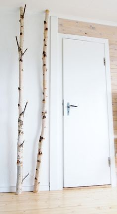 this! this is what i want! now where to find birch trees...
