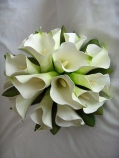 Timeless - Calla Round Bouquet