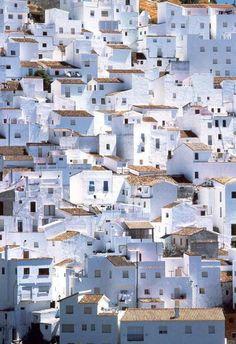 Spain  15. No puedo imaginar si tengo que vivir en un barrio como esto. Las casas son muy cercas y nadie puede tener una pieza de tierra.