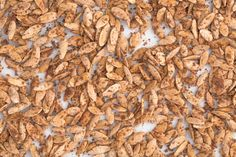 Here's a must-read article from Delish:  Pumpkin Pie-Flavored Pumpkin Seeds